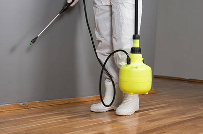 Factors to Consider When Choosing Pest Control Company
